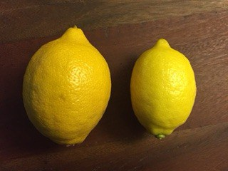 Picture of organic lemon and conventional lemon