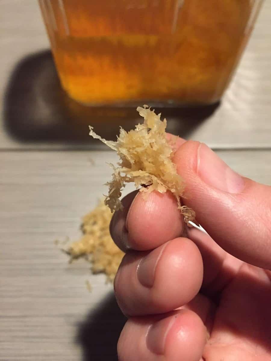 Lemon zest after infusion