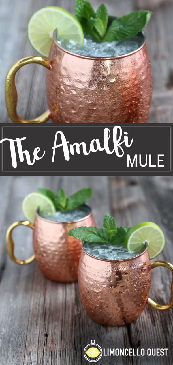An Italian Twist on the Moscow Mule from LimoncelloQuest